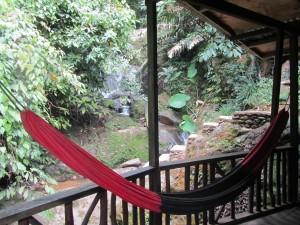 Jungle Inn