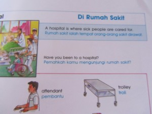Indonesian-English picture dictionary